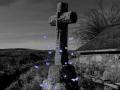 Papillon à la croix
